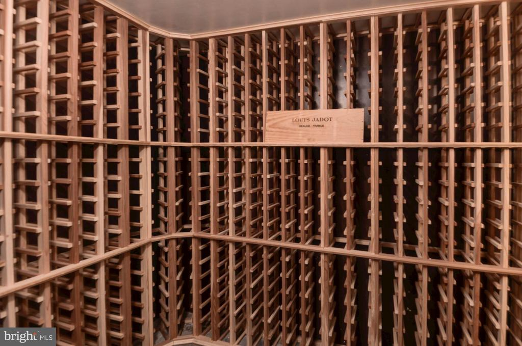 Walk-in wine cellar ( temperature controlled) - 2820 FRANKLIN RD, ARLINGTON