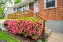 Beautiful azaleas to enjoy in Spring! - 4007 SPRUELL DR, KENSINGTON
