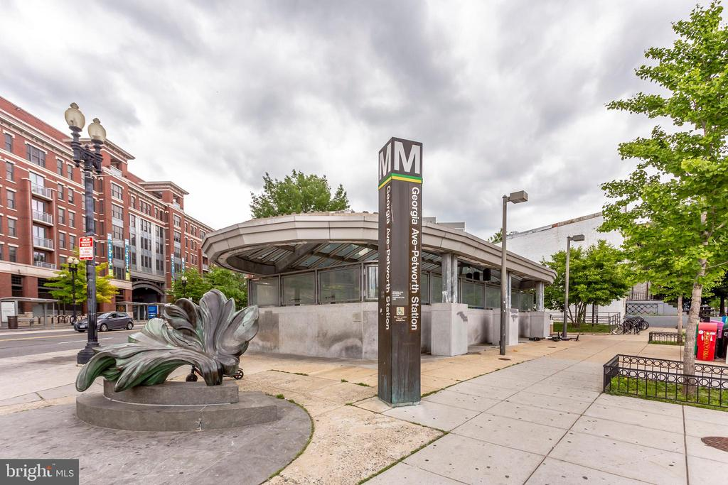 Georgia Ave-Petworth Metro (Green/Yellow Lines) - 4326 GEORGIA AVE NW #402, WASHINGTON