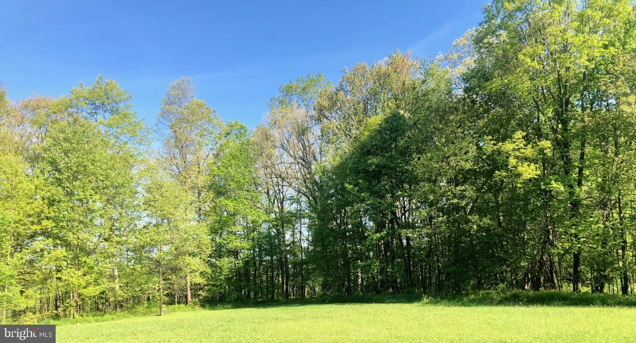Land for Sale at 166 Spring Ln Oakland, Maryland 21550 United States