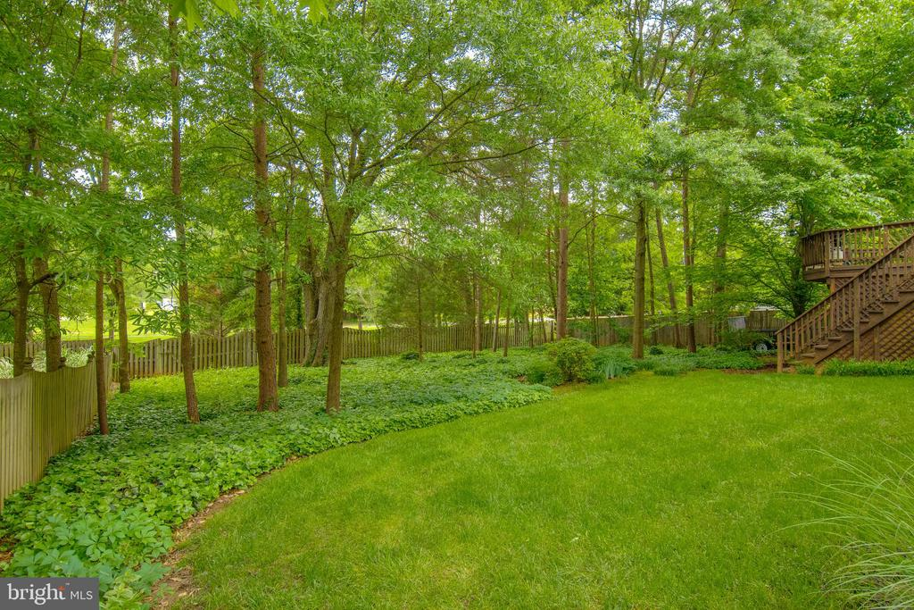 Backyard - 15612 NEATH DR, WOODBRIDGE