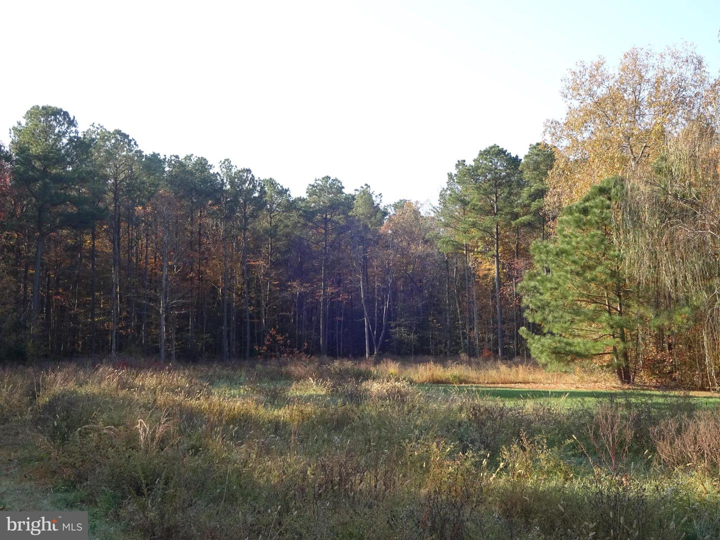 Land for Sale at Lot 7 & 8 Brannocks Woods Canvasback Dr Cambridge, Maryland 21613 United States