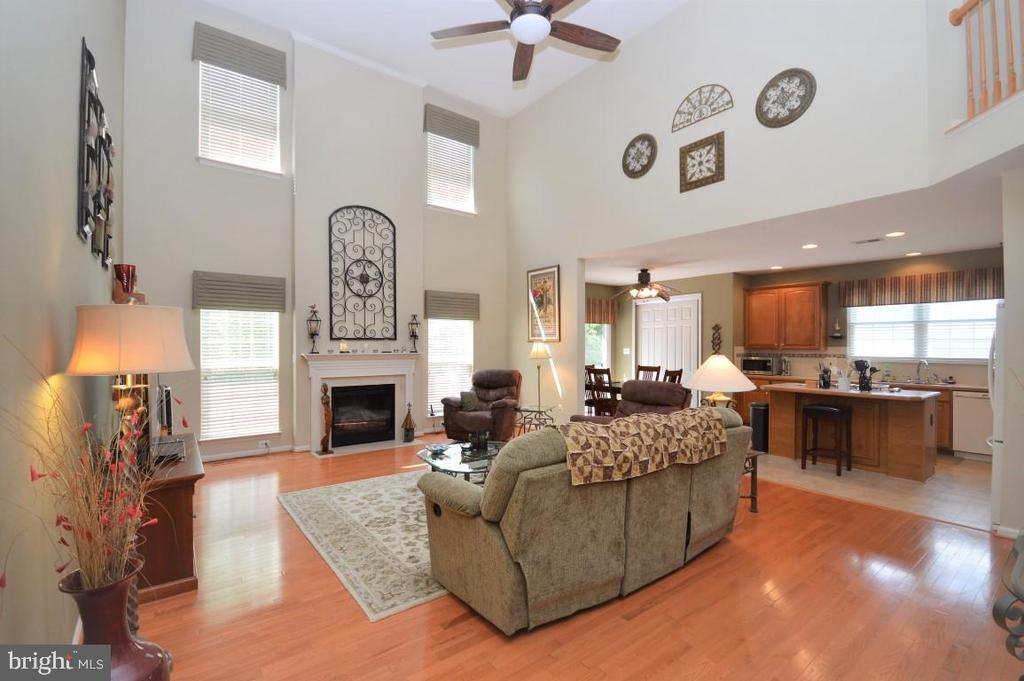 Family Room w/Gas Fireplace - 15537 ALLAIRE DR, GAINESVILLE