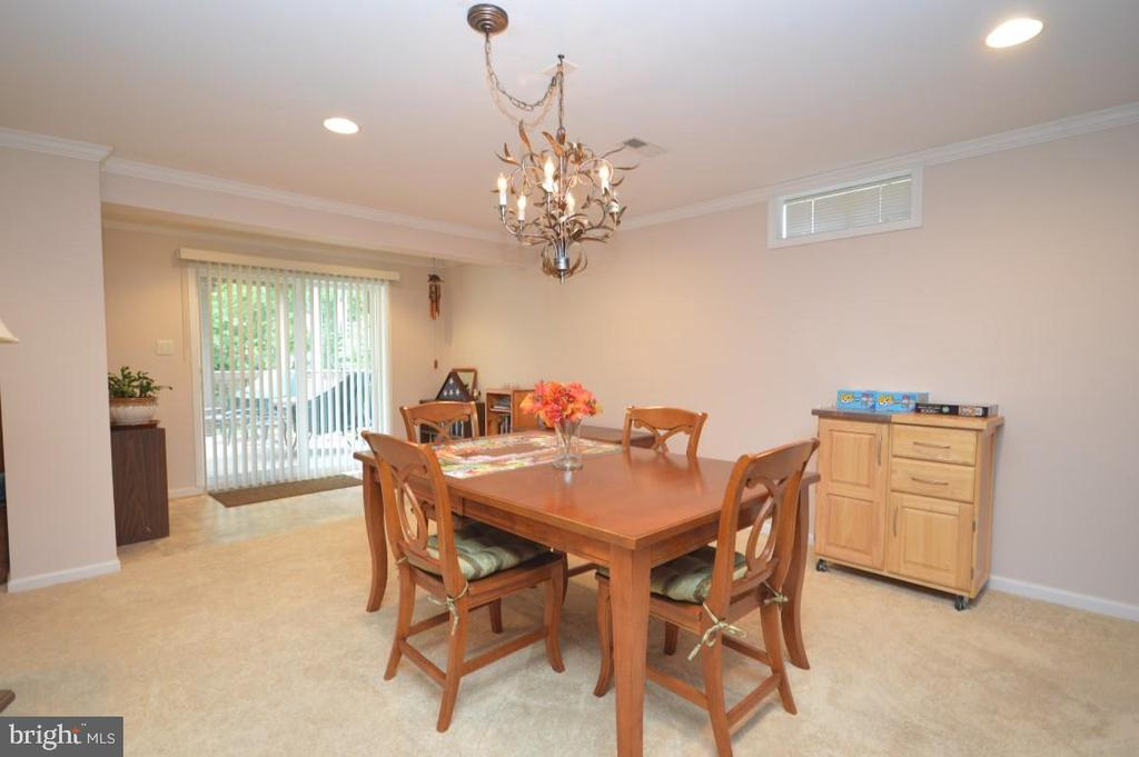 Walk Out REC Room - 15537 ALLAIRE DR, GAINESVILLE