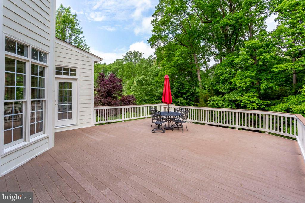 Plenty of space for entertaining / cookouts - 11692 CARIS GLENNE DR, HERNDON