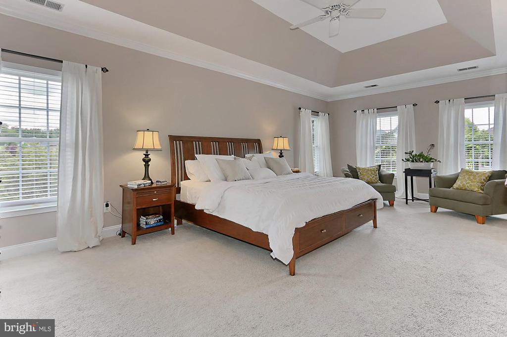 Master Bedroom - 43409 BLANTYRE CT, ASHBURN
