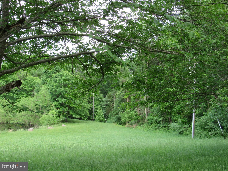 أراضي للـ Sale في Catharpin, Virginia 20143 United States