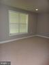 Basement Bedroom - 5322 SAMMIE KAY LN, CENTREVILLE