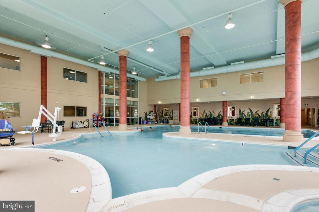 Indoor Pool and Spa - 19385 CYPRESS RIDGE TER #715, LEESBURG