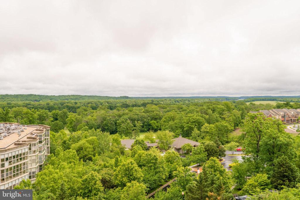 Great Views Including Amazing Sunrises - 19385 CYPRESS RIDGE TER #715, LEESBURG