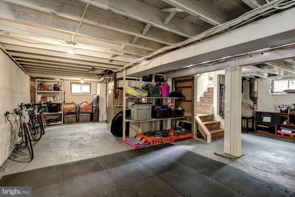 Dry basement has plenty of storage - 1703 N RANDOLPH ST, ARLINGTON