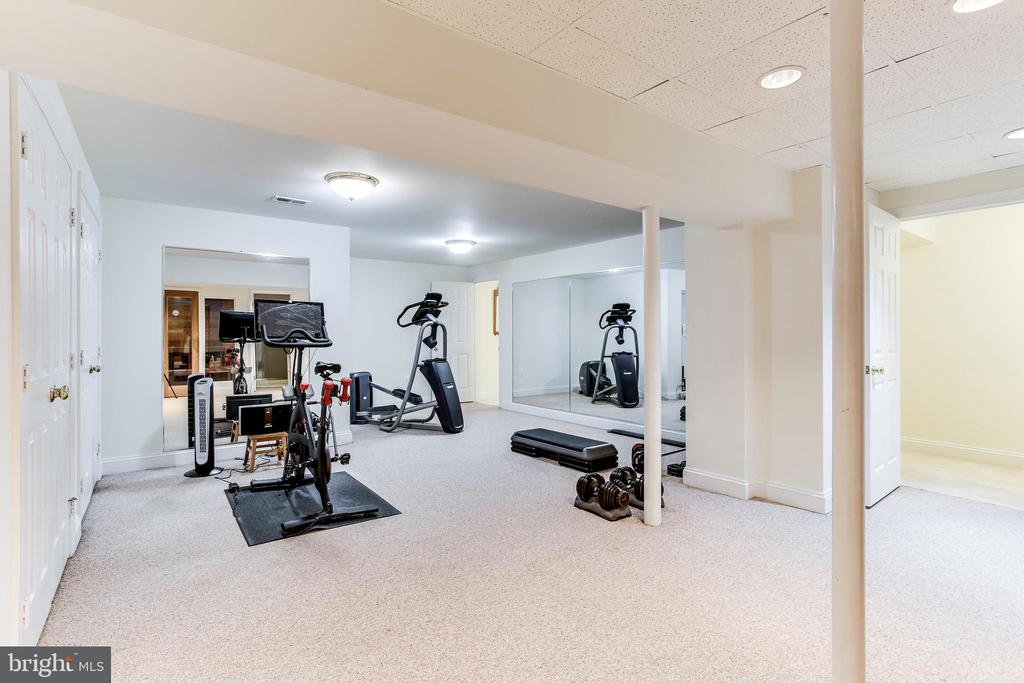 Lower Level Exercise Room - 1144 ROUND PEBBLE LN, RESTON