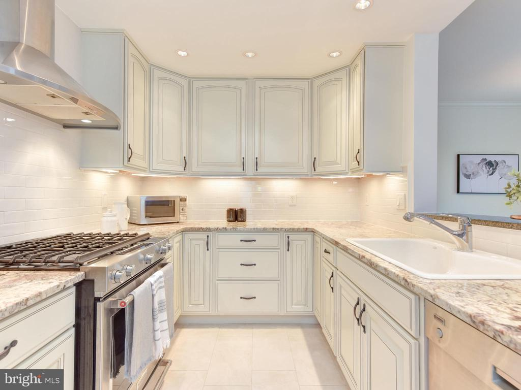 Updated Kitchen with Top Tier Appliances - 621 ST ASAPH ST N #103, ALEXANDRIA