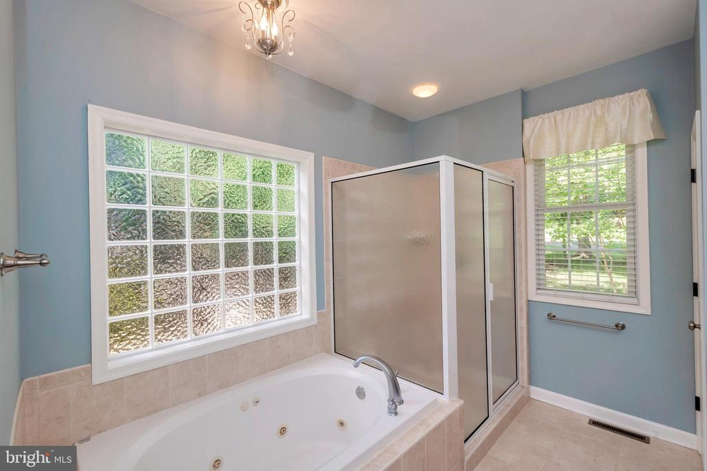 Main master with jacuzzi & shower - 430 BIRDIE RD, LOCUST GROVE
