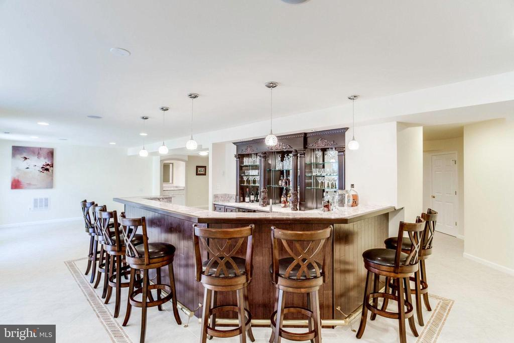 Most Spectacular Bar You Have Ever seen in a Home! - 7900 GREENEBROOK CT, FAIRFAX STATION