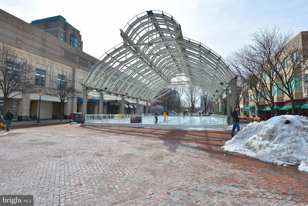 Reston Town Center Skating and Shopping - 11309 STONEHOUSE PL, POTOMAC FALLS