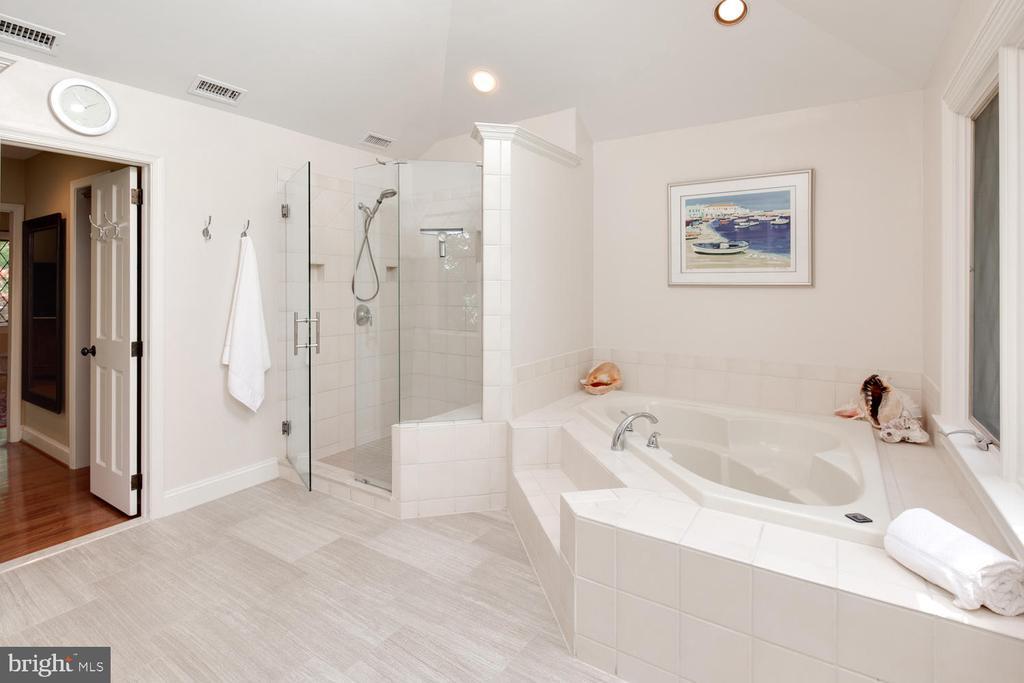 Luxurious master bath - 2821 N QUEBEC ST, ARLINGTON