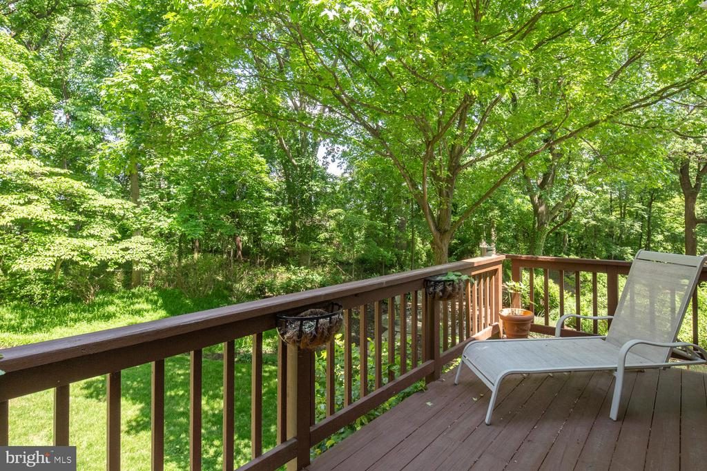 Views of the yard from deck - 2821 N QUEBEC ST, ARLINGTON