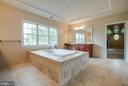 Massive Master Bath with large soaking tub - 15052 BANKFIELD DR, WATERFORD