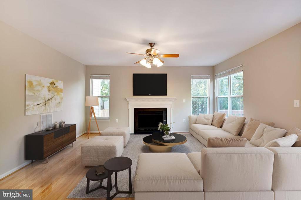 Family Room - 46888 DUCKSPRINGS WAY, STERLING