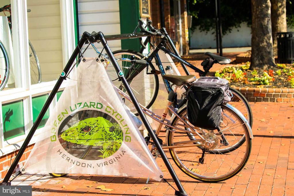 Green Lizard Coffe/Bike Store - 765 MONROE ST, HERNDON