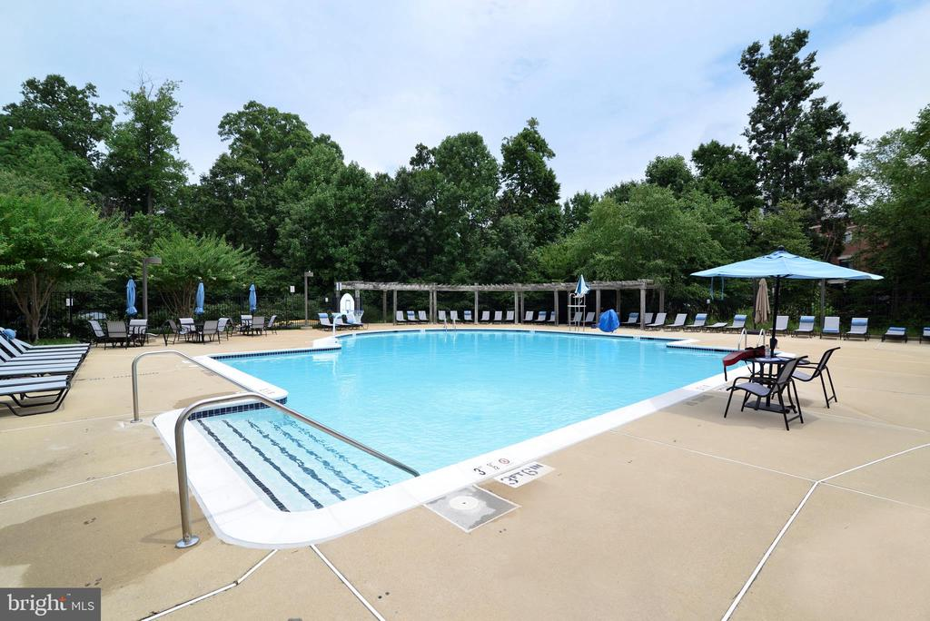 Neighborhood Pool - 12144 CHANCERY STATION CIR, RESTON