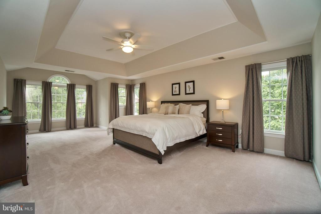 Beautiful master suite with lots of light - 1590 MONTMORENCY DR, VIENNA