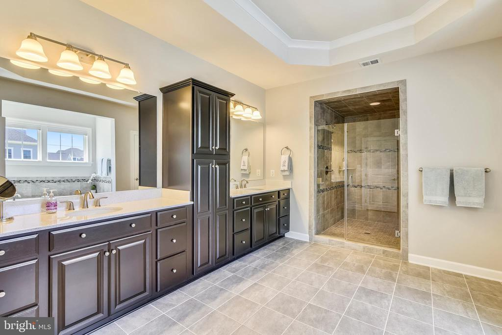 Luxury master bath with huge shower~~ - 41984 PADDOCK GATE PL, ASHBURN