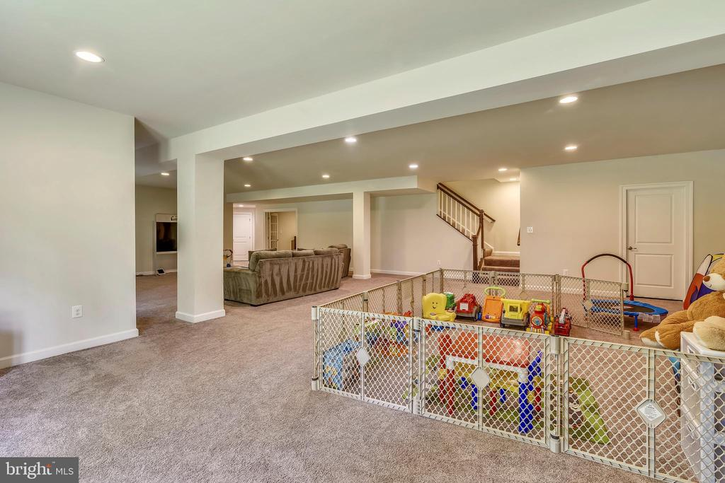 Plenty of room for fun and play - 41984 PADDOCK GATE PL, ASHBURN