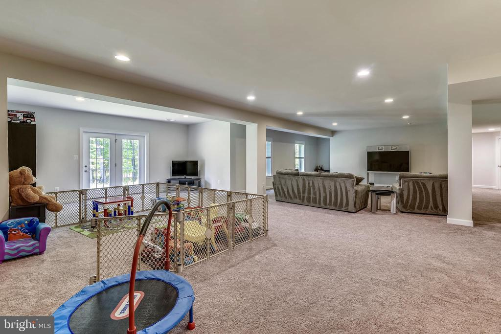 Spacious~daylight basement - 41984 PADDOCK GATE PL, ASHBURN