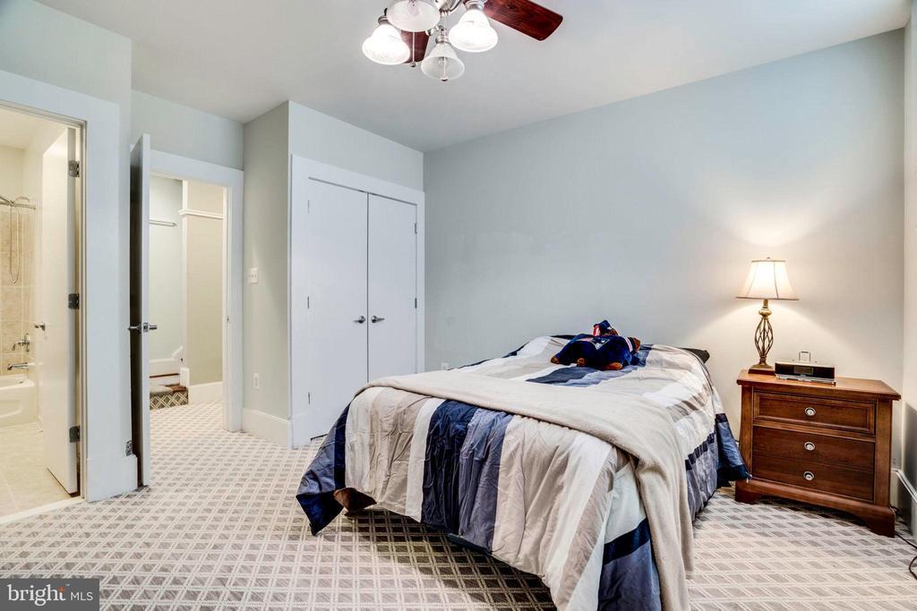 Bright lower level bedroom with it's own bath - 2007 N POLLARD ST, ARLINGTON