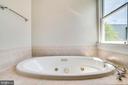 Jacuzzi tub in the Master Bath - 2007 N POLLARD ST, ARLINGTON