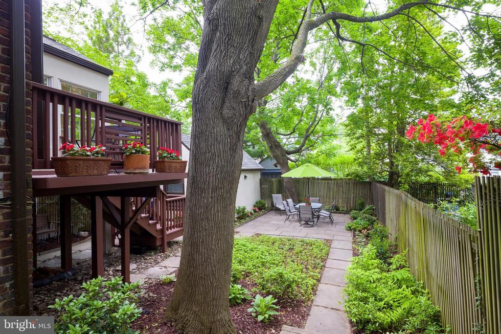 Lush yard that wraps around the house - 3631 VAN NESS ST NW, WASHINGTON