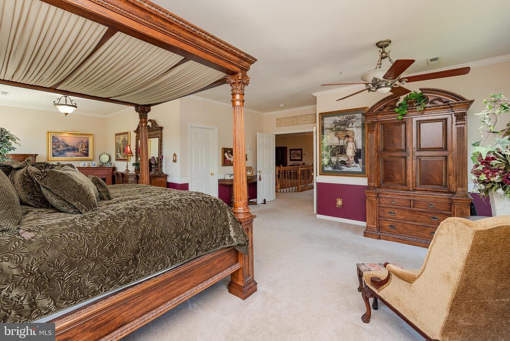 Master Bedroom - 8733 ENDLESS OCEAN WAY, COLUMBIA