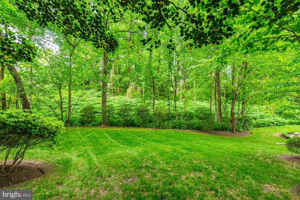 No houses in your back yard - now or later! - 3856 N RIXEY ST, ARLINGTON