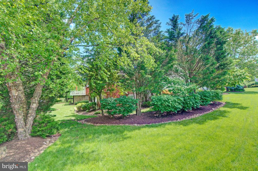 Wow! Absolutely Beautiful Yard - 43092 STONECOTTAGE PL, ASHBURN