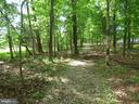 Trail in wooded area out back - 41984 PADDOCK GATE PL, ASHBURN
