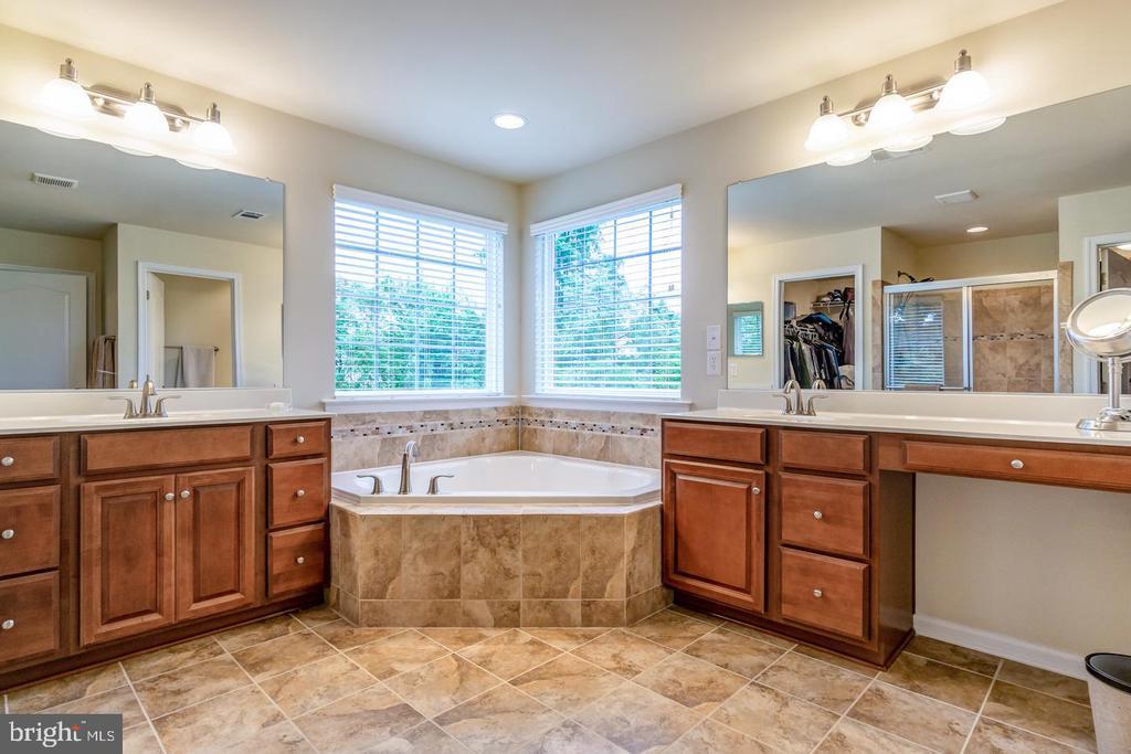 Master bath: corner tub, shower, 2 walk in closets - 24496 LENAH TRAILS PL, ALDIE