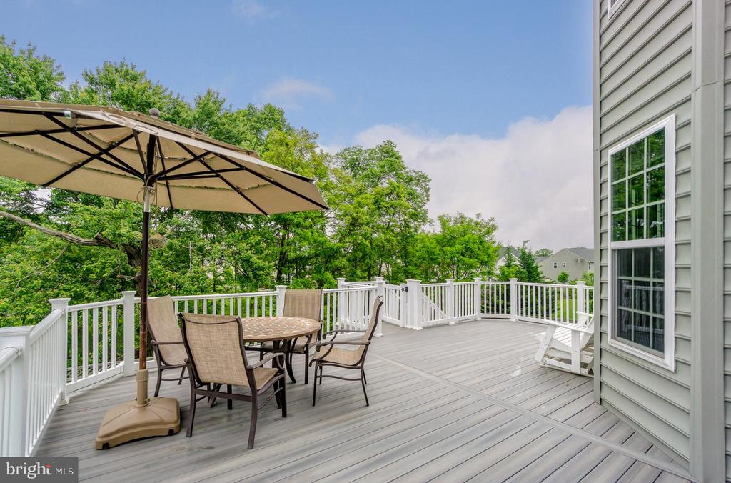 Large deck with steps down to lower level patio - 24496 LENAH TRAILS PL, ALDIE