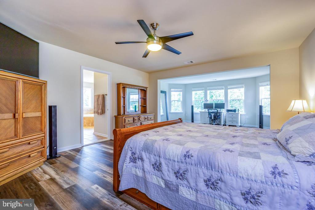 Owner's suite with double door entry - 24496 LENAH TRAILS PL, ALDIE