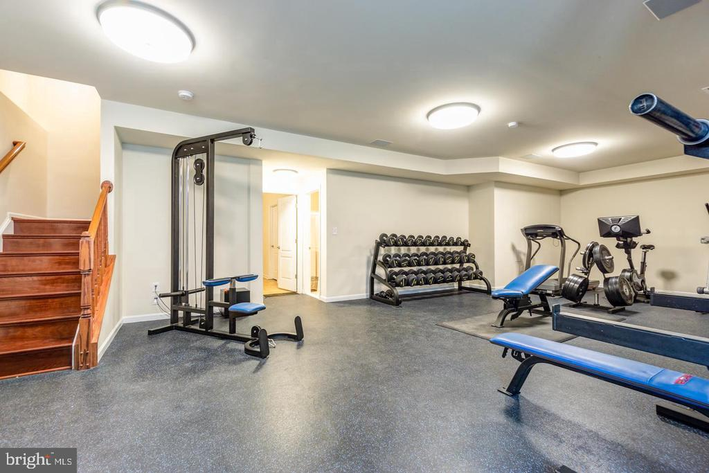 Amazingly versatile space currently used as a gym - 24496 LENAH TRAILS PL, ALDIE