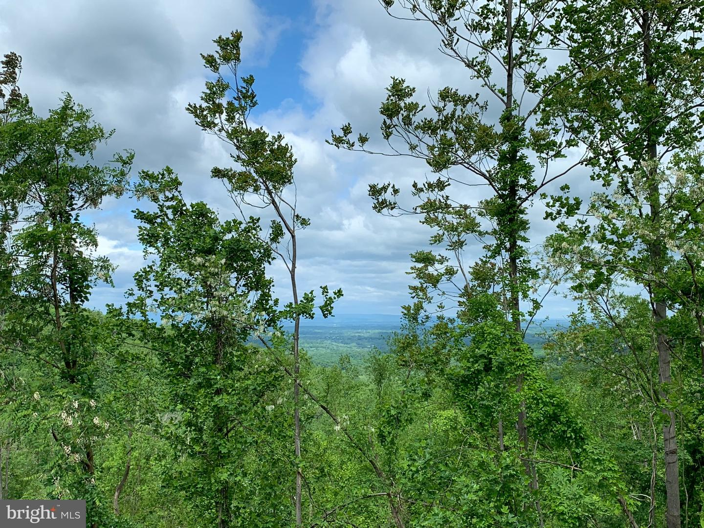 Land for Sale at Bluemont, Virginia 20135 United States