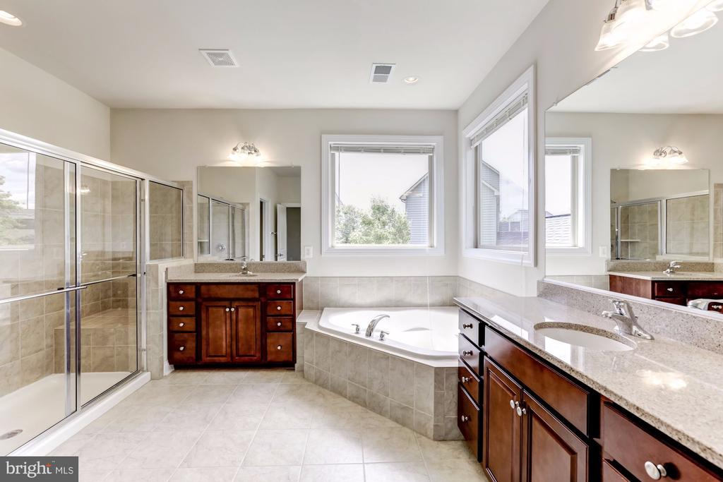 Master Bath, Glass Walk in Shower - 43800 GRANTNER PL, ASHBURN