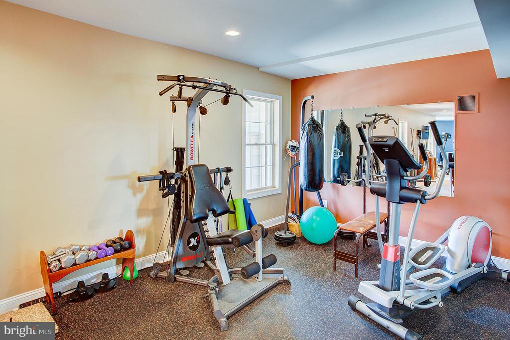 Work out area in lower level. - 41045 STUMPTOWN RD, WATERFORD