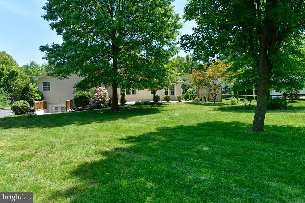 Backyard from buildings - 20257 REDROSE DR, STERLING