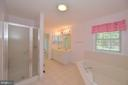 Master bath with separate shower and tub - 20257 REDROSE DR, STERLING