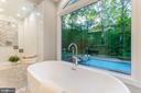 Relax in your tub and overlook your pool! - 10630 TIMBERIDGE RD, FAIRFAX STATION