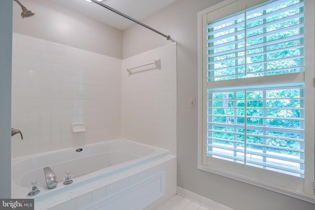 Master Bathroom - 20816 WATERBEACH PL, STERLING