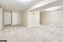 Basement Recreation Room - 20816 WATERBEACH PL, STERLING