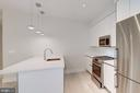Contemporary and gourmet kitchen - 1745 N ST NW #102, WASHINGTON